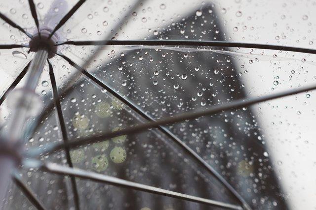 Погода у цей день вказує на врожайність - фото 322953