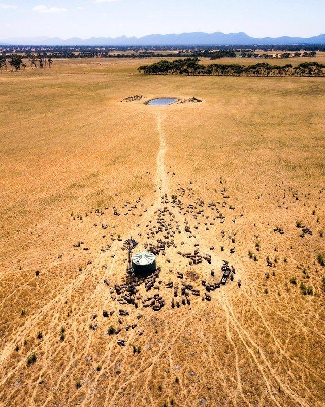 Захоплива Австралія з висоти пташиного польоту: яскраві фото - фото 323496