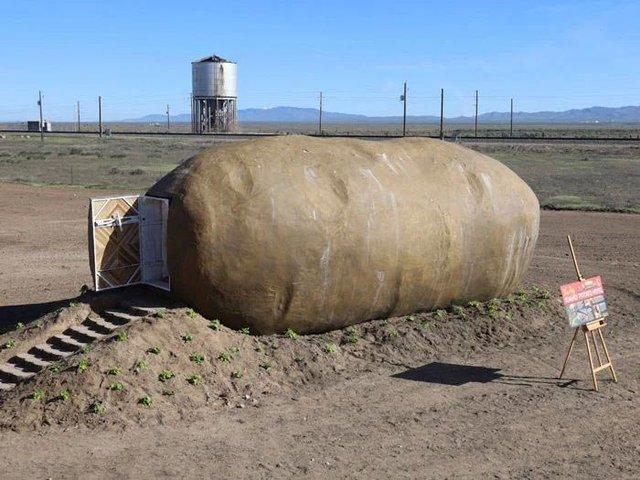 Будинок у вигляді картоплі: на сервісі з оренди квартир з'явилися незвичні апартаменти - фото 324781