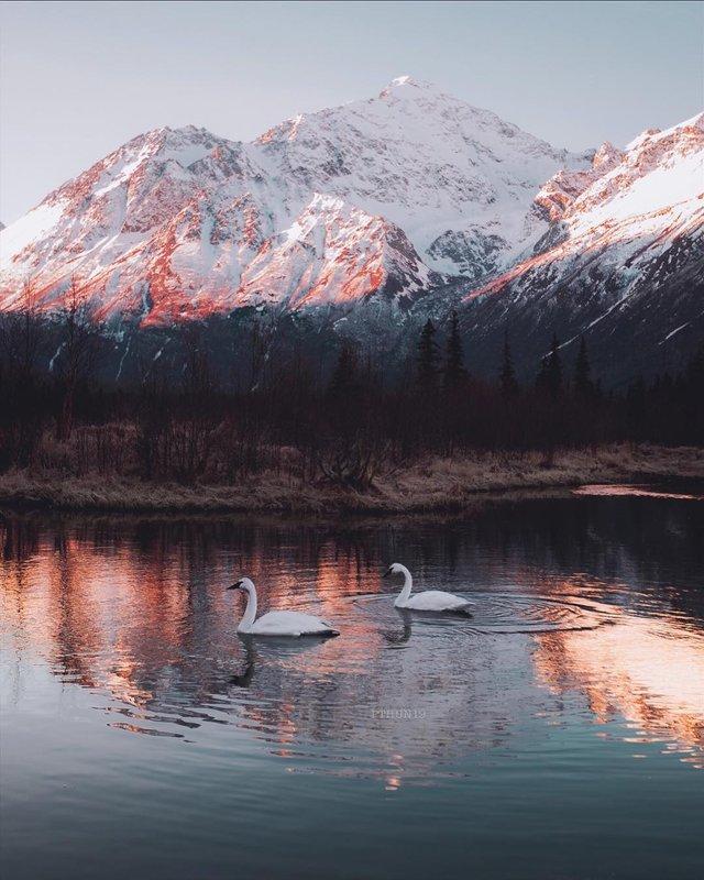Фото Аляски, які змусять затримати погляд: захопливі кадри - фото 325032