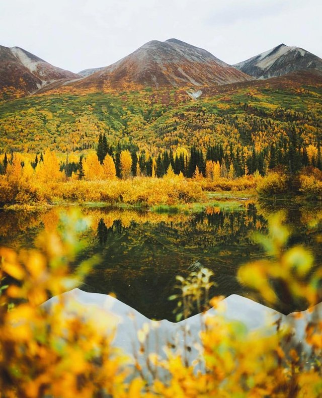 Фото Аляски, які змусять затримати погляд: захопливі кадри - фото 325033