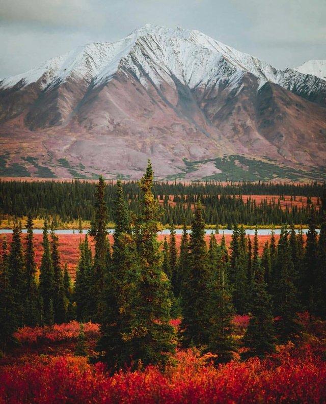 Фото Аляски, які змусять затримати погляд: захопливі кадри - фото 325038