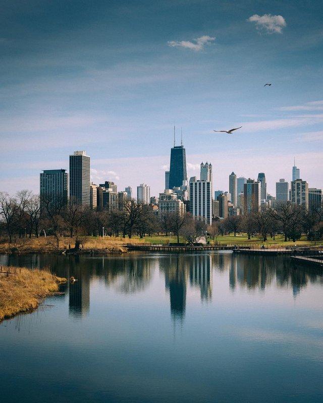 Чикаго з особливих ракурсів: фото, які варто побачити - фото 326169
