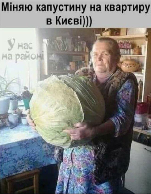 Міняю капусту на квартиру в Києві: найкумедніші меми про подорожчання овочів - фото 326320