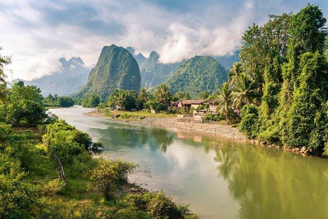Джунглі Лаосу  - фото 326851