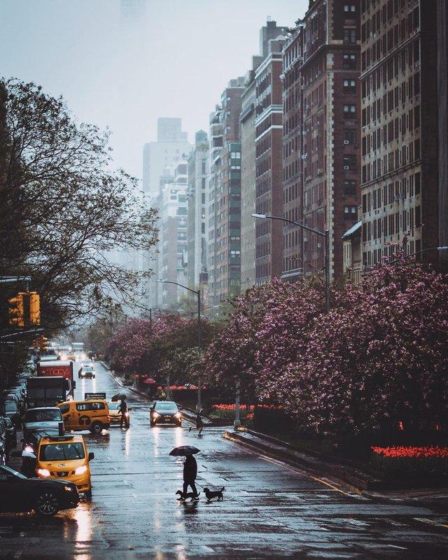 Нью-Йорк, який не бачать туристи: захопливі фото - фото 327019