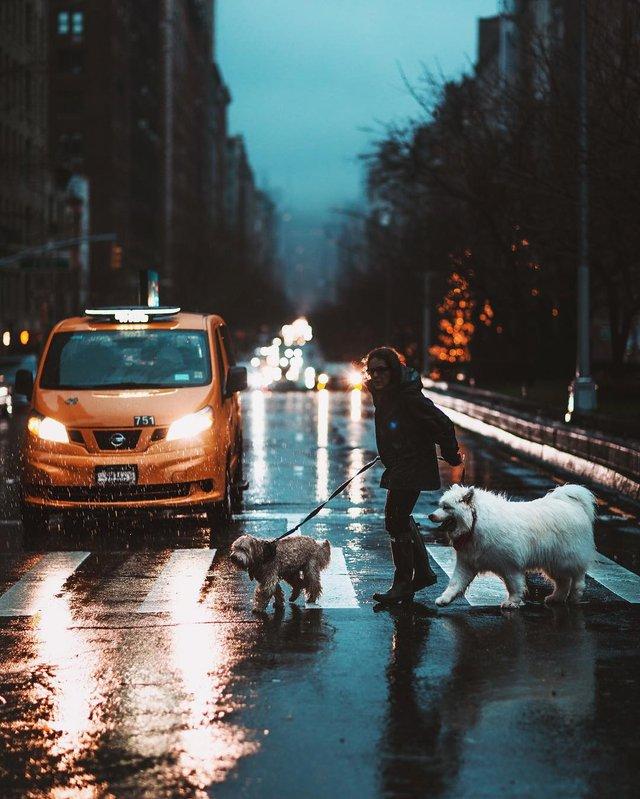 Нью-Йорк, який не бачать туристи: захопливі фото - фото 327023