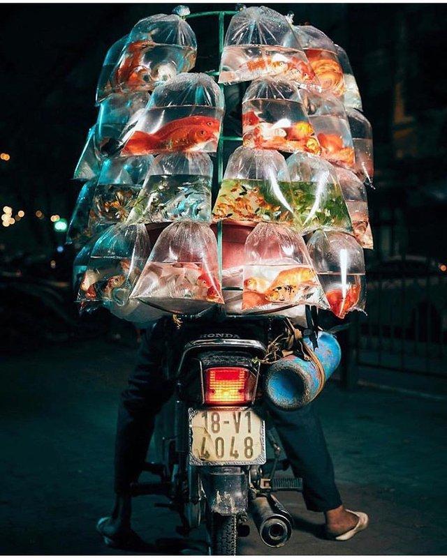 Життя мотоциклістів зі служби доставки у В'єтнамі: вражаючі фото - фото 327147