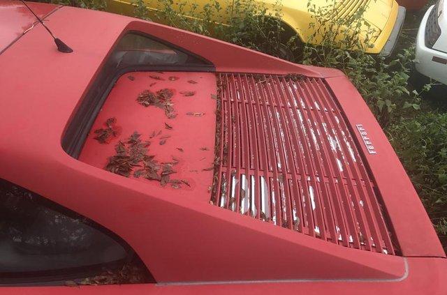Покинута посеред поля: у США знайшли колекцію Ferrari - фото 327768