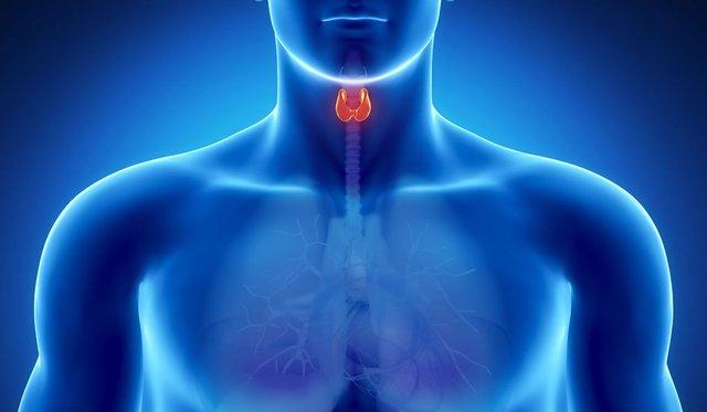 Всесвітній день щитовидної залози - фото 328678
