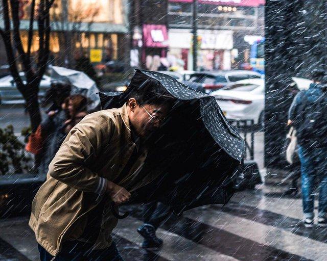 Життя у Сеулі: вуличні фото, які приковують погляд - фото 329445