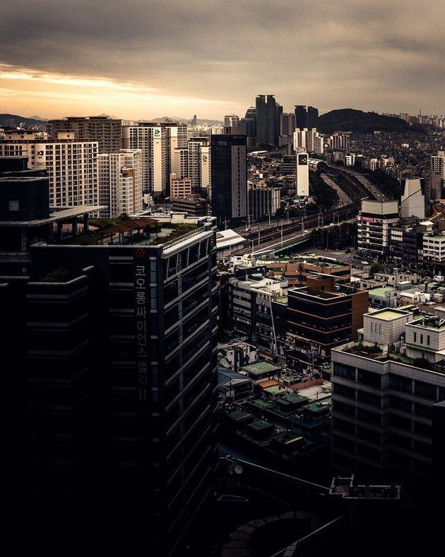 Життя у Сеулі: вуличні фото, які приковують погляд - фото 329453