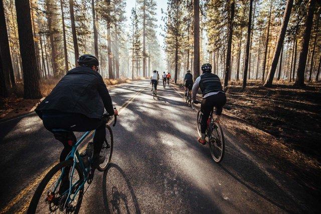 Названо ТОП велосипедних столиць світу - фото 330837