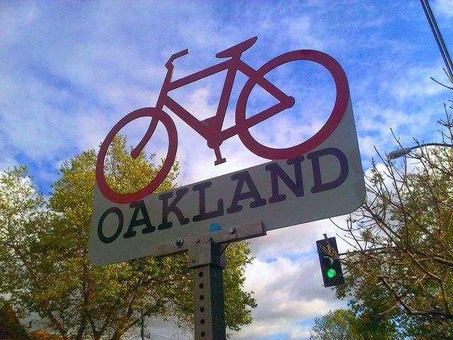 Названо ТОП велосипедних столиць світу - фото 330838