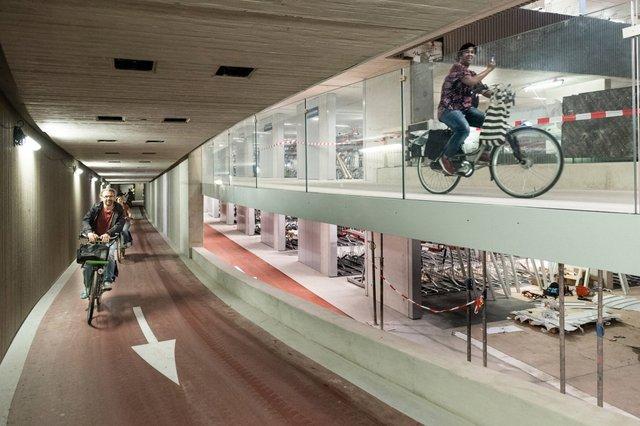 Названо ТОП велосипедних столиць світу - фото 330843