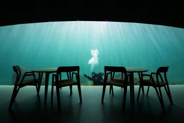 У Норвегії відкрили перший в Європі підводний ресторан - фото 331499