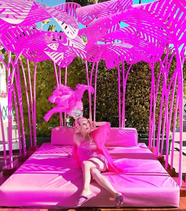 Рожеве життя: американка-барбі підкорює мережу - фото 331844