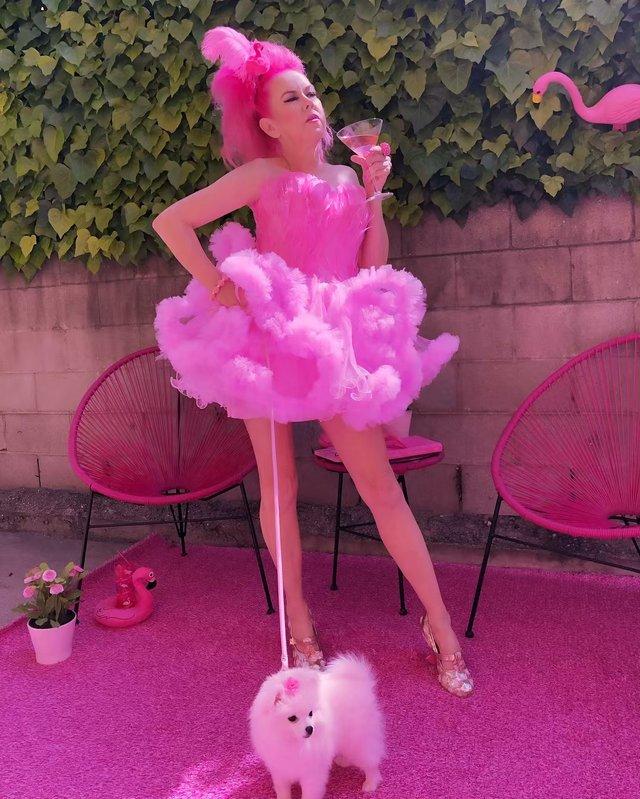 Рожеве життя: американка-барбі підкорює мережу - фото 331849