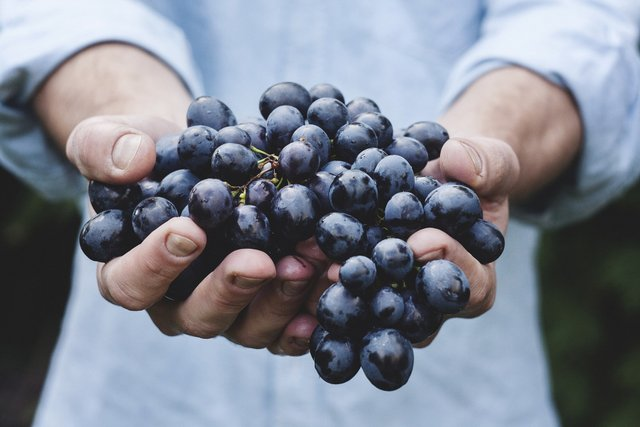 Цей фрукт робить усмішку красивою - фото 331860