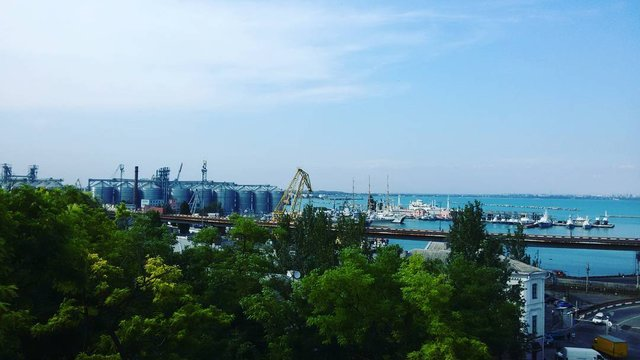 Одеський порт - фото 331989