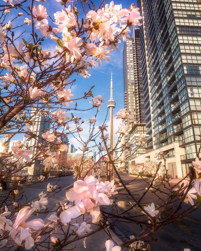 Особлива краса Канади, яку не бачать туристи: яскраві фото - фото 332779
