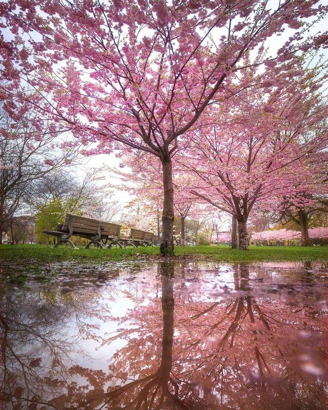 Особлива краса Канади, яку не бачать туристи: яскраві фото - фото 332789