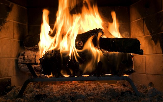 Брендам заборонять спалювати нерозпроданий одяг - фото 333341
