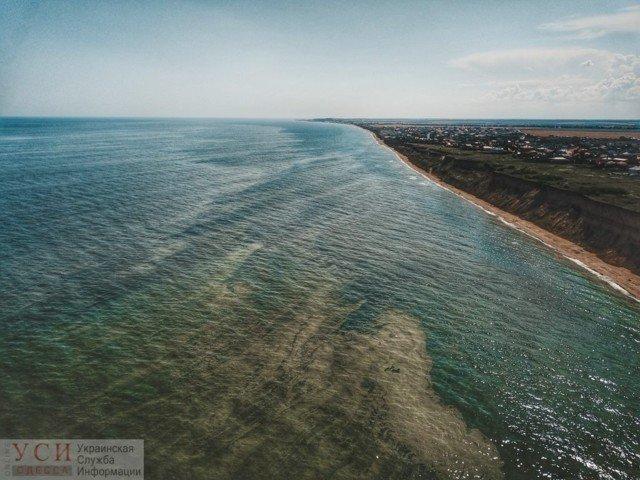 Купатися заборонено! Позеленіле море Одеси у свіжих знімках - фото 333588