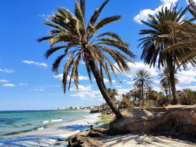 Пляж у Суссі - фото 333653