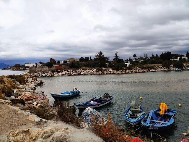 Військовий порт на околицях столиці Туніс - фото 333654