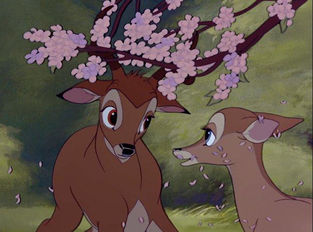 Bambi  - фото 334046
