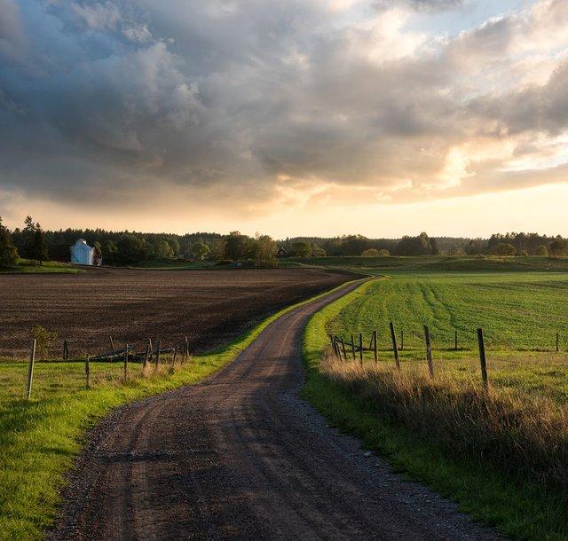 Захоплива подорож Швецією у яскравих фото - фото 334160