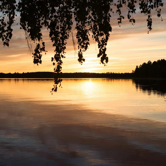 Захоплива подорож Швецією у яскравих фото - фото 334162