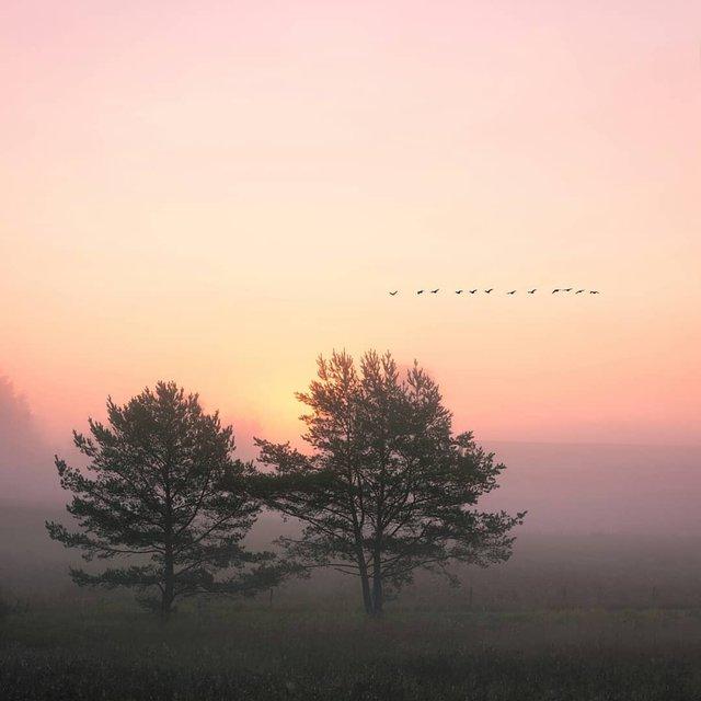 Захоплива подорож Швецією у яскравих фото - фото 334164
