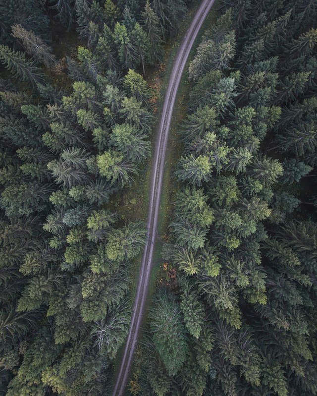 Захоплива подорож Швецією у яскравих фото - фото 334165
