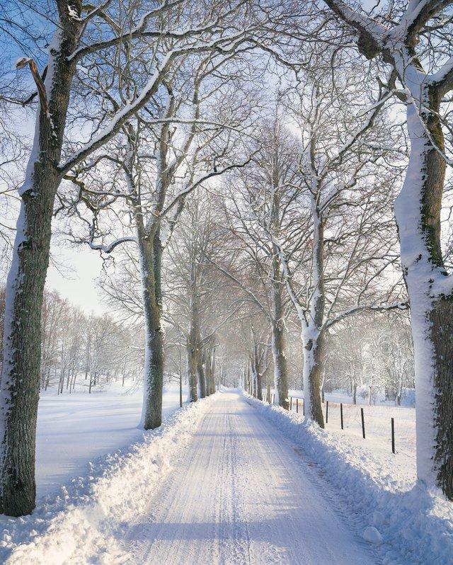 Захоплива подорож Швецією у яскравих фото - фото 334166