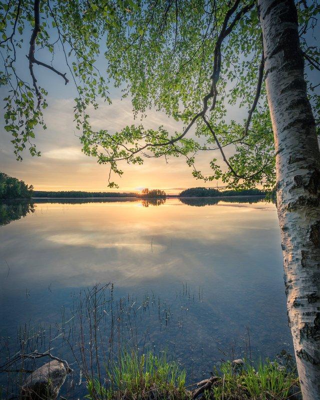 Захоплива подорож Швецією у яскравих фото - фото 334179