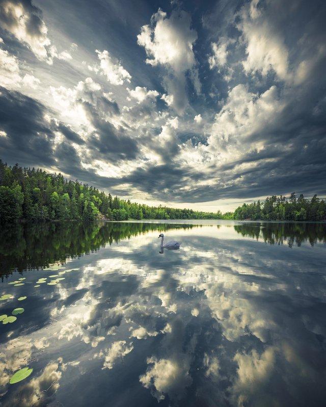 Захоплива подорож Швецією у яскравих фото - фото 334181