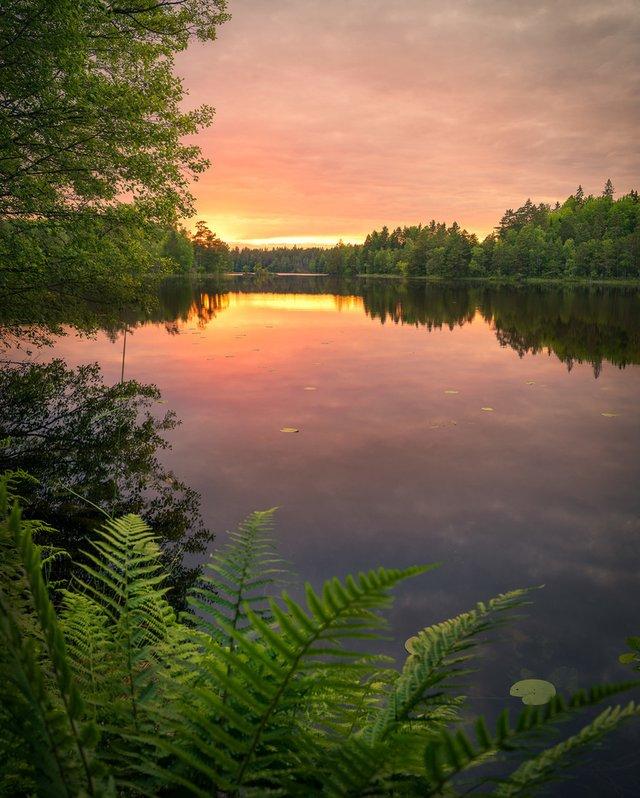 Захоплива подорож Швецією у яскравих фото - фото 334182