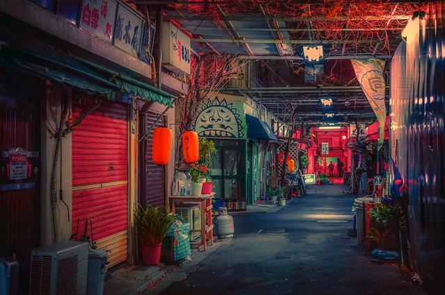 Фотограф показав, як його змінила Японія: захопливі кадри - фото 334935