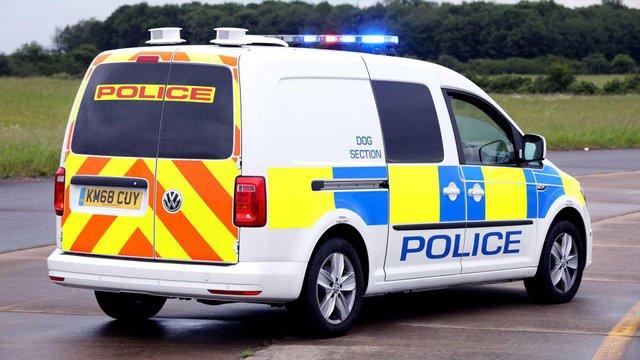 Volkswagen зробив фургон для поліцейських собак - фото 335975