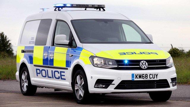 Volkswagen зробив фургон для поліцейських собак - фото 335976