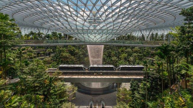 Тропічний ліс в аеропорту Чангі - фото 336608
