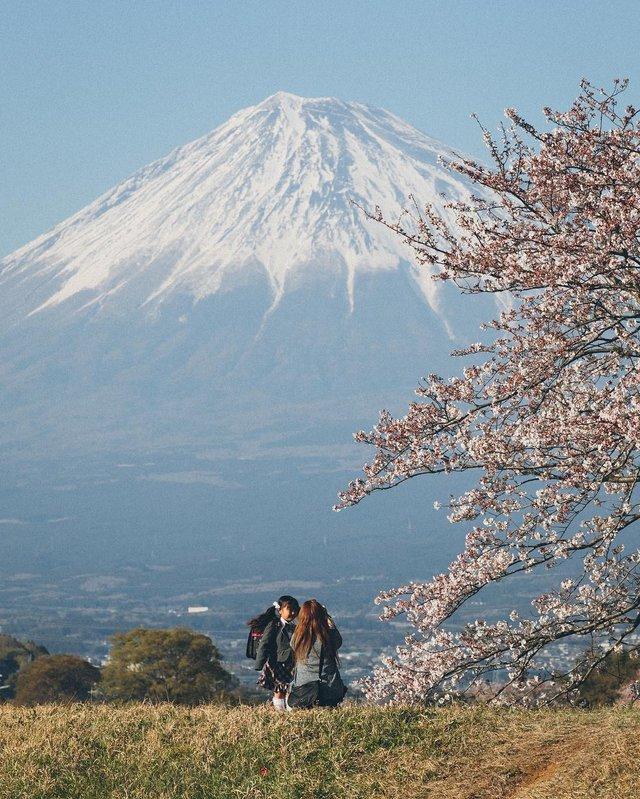 Життя в Японії: захопливі вуличні фото - фото 336735