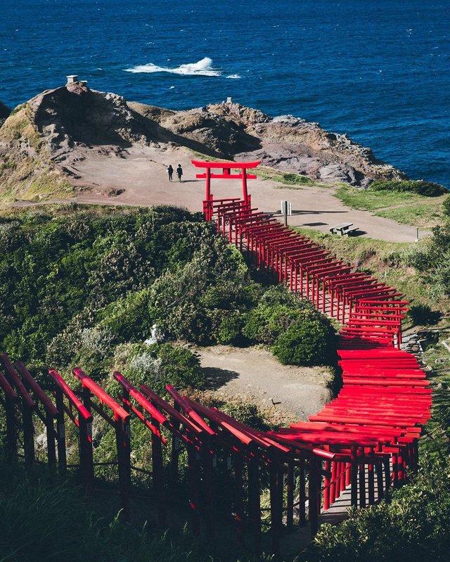 Життя в Японії: захопливі вуличні фото - фото 336747