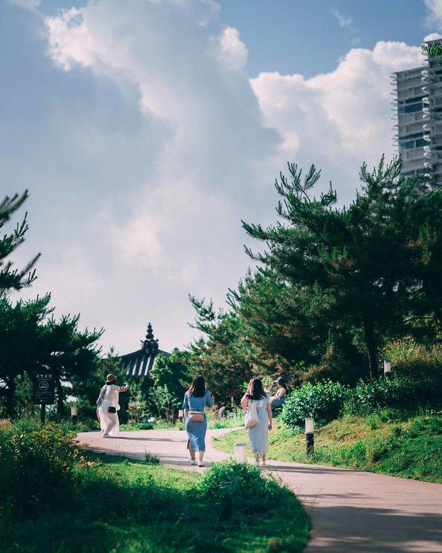 Американець змінив нестерпну роботу на життя в Сеулі: захопливі кадри - фото 338272