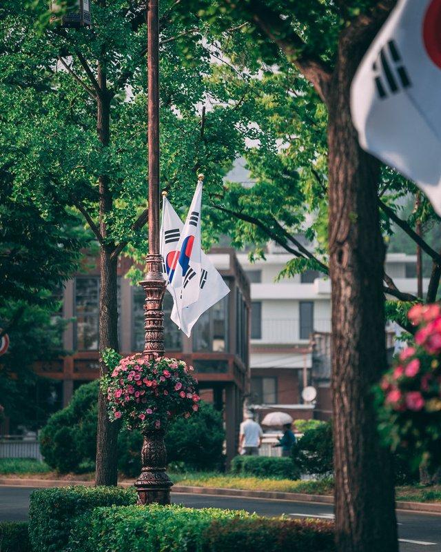 Американець змінив нестерпну роботу на життя в Сеулі: захопливі кадри - фото 338275