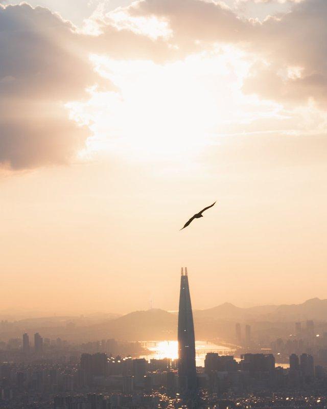 Американець змінив нестерпну роботу на життя в Сеулі: захопливі кадри - фото 338277