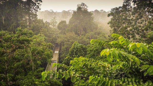 Встигніть відвідати: 5 туристичних напрямків, які можуть зникнути - фото 339305