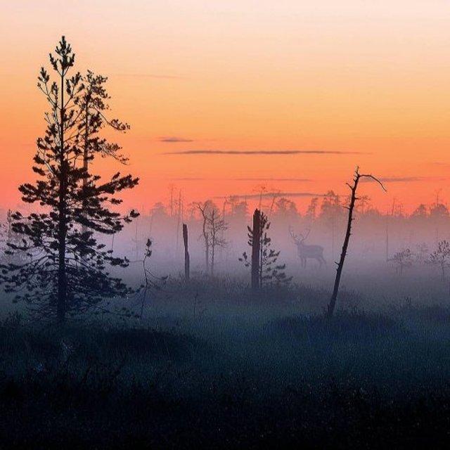Фотограф показав найказковіше місце на Землі - фото 339349